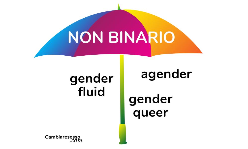 Cosa vuol dire non binary e gender fluid