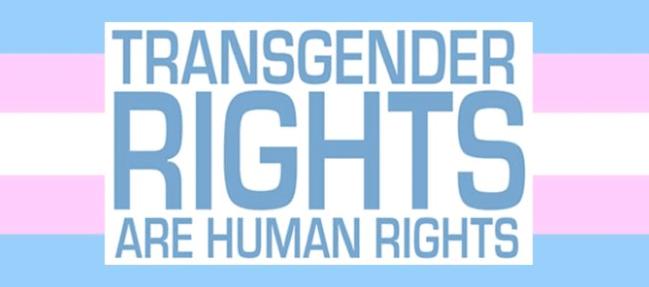Bandiera transgender con scritto: transgender rights are human rights, cioè i diritti delle persone transgender sono diritti umani. I farmaci ormonali gratuiti sono diritti umani.